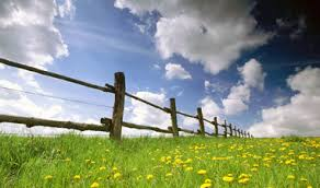 photo of pasture and fence